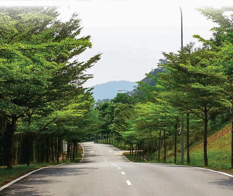 bàng Đài Loan